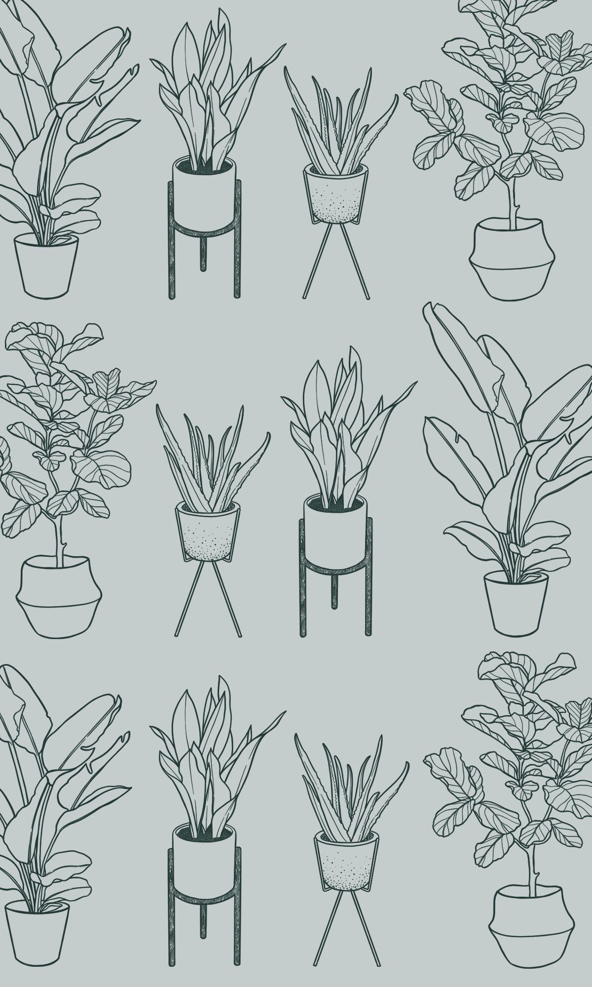 Houseplant-Surface-Pattern_Design.jpg