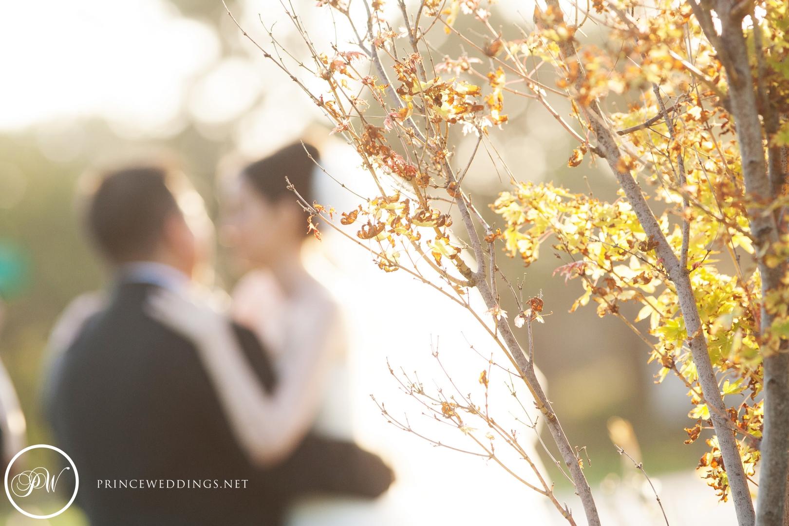 loscoyotes_Wedding_Photos69.jpg