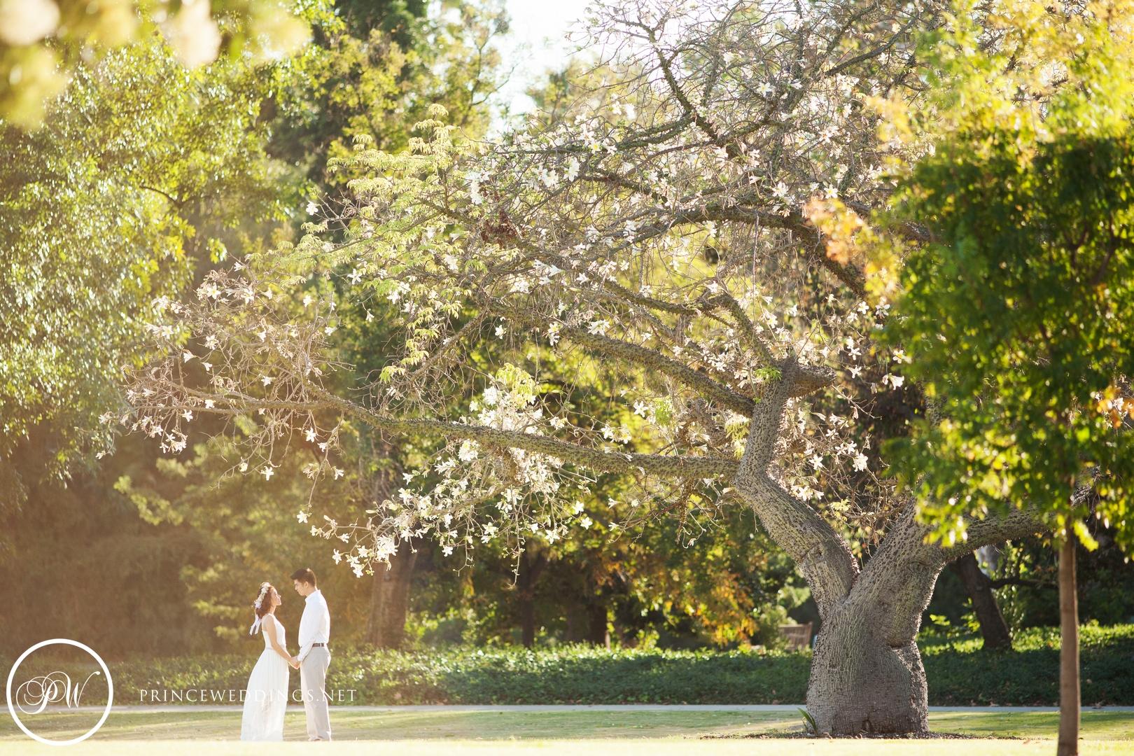 LA Arboretum Engagement Photography00025.jpg