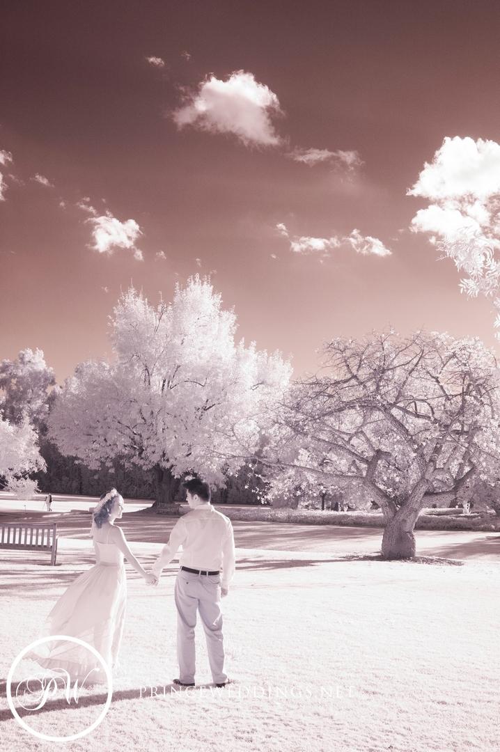 LA Arboretum Engagement Photography00022.jpg