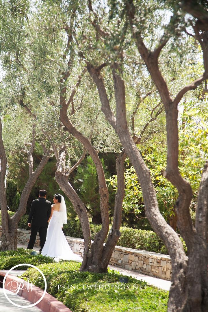 TurnipRose_Wedding_Photography_James+Luisa16.jpg