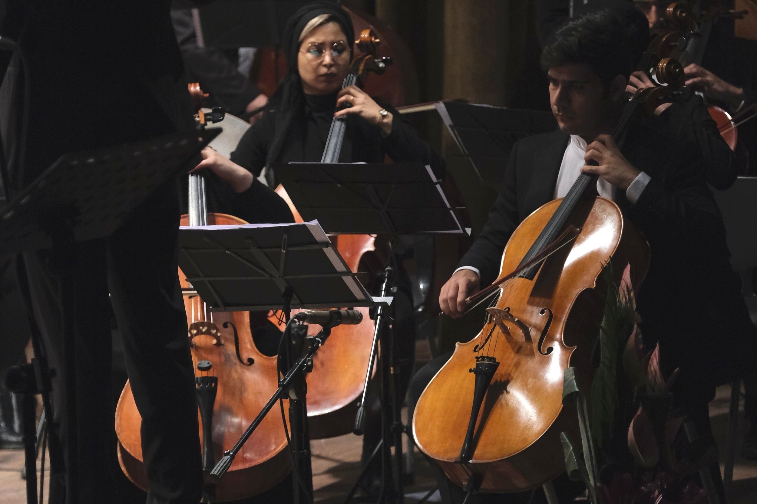 Cello - The romantic-sounding low one that the musician holds between their knees. The cello section also has a lot of big melodies, plus lots of sweet rhythmic parts where they get to jam out. Cello is a lot of people's favourite orchestral instrument, and I tooootally get it.