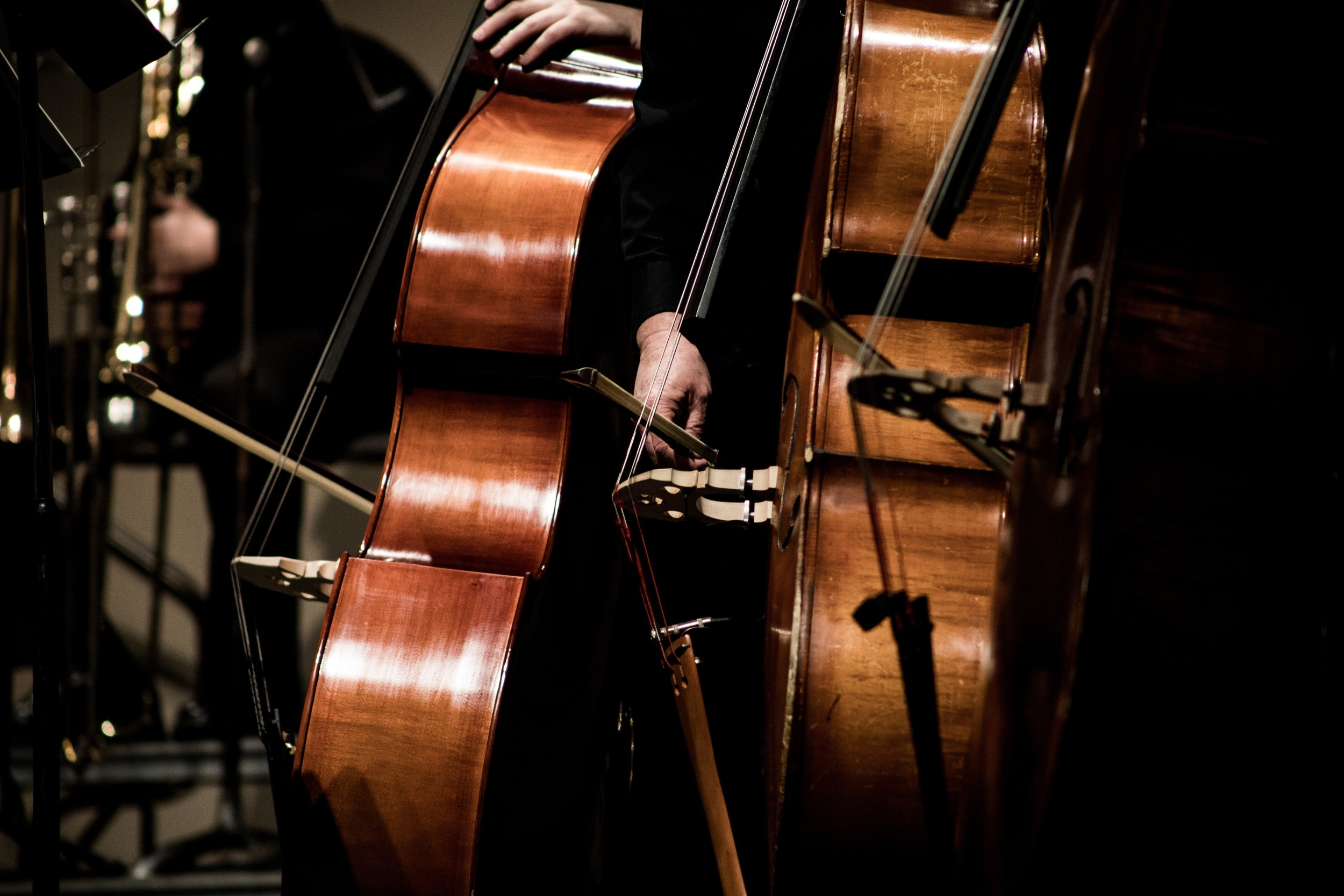 Double Bass - The big daddy of the bowed strings that the musician plays standing up (or perched on a stool). The basses play lots of harmony and rhythm, but they also play very low long notes to ground the harmony (that means: make everything sound right).