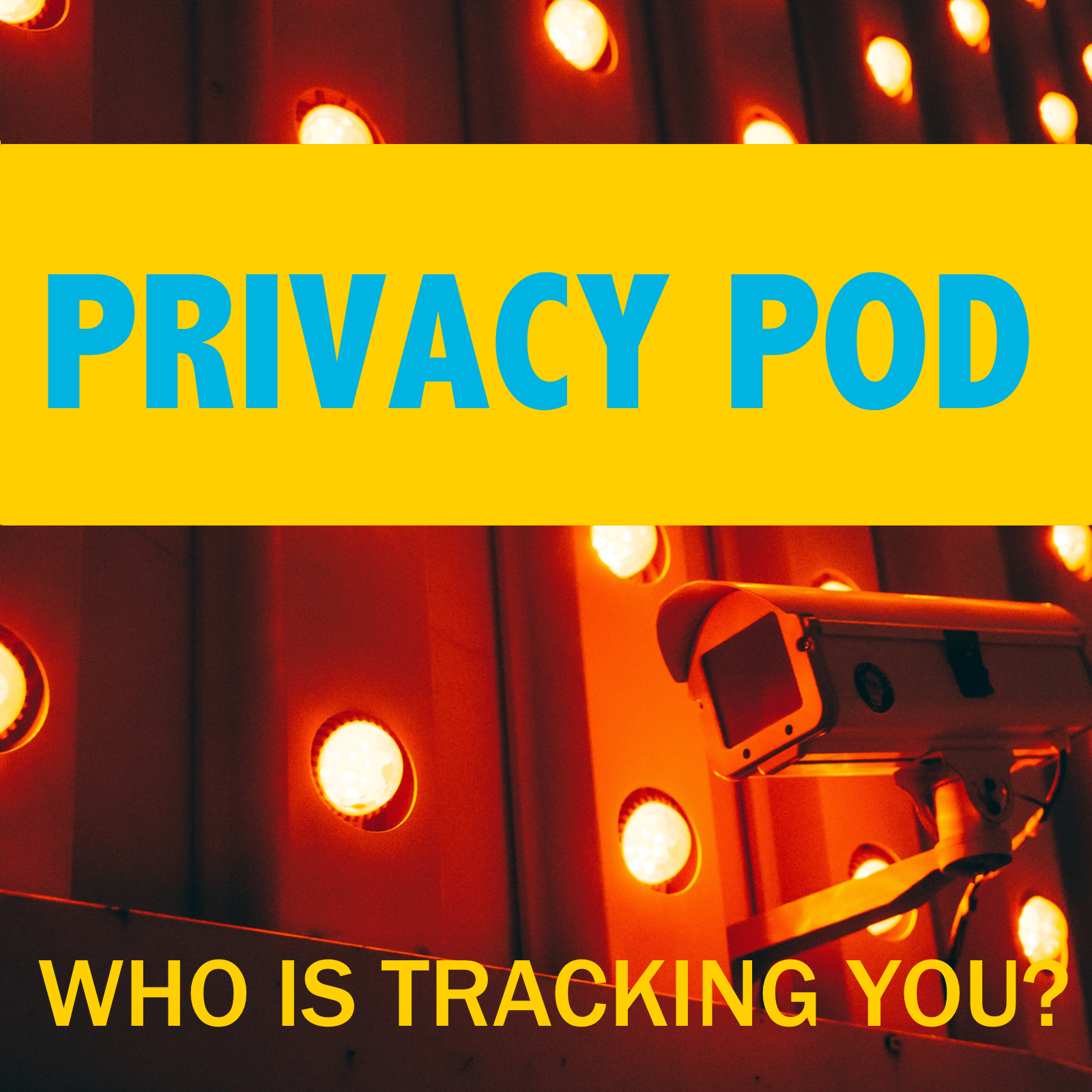 Privacy Pod - A journalist gives an interview to a popular podcaster and then disappears, leaving behind a stack of audio cassettes that tell the story of a social media conspiracy. Ten-episode serial drama based on cybercrime casesPrivacy Pod stars Emmy-award-winning voice actor Ben Diskin, GK Bowes, and Zehra Fazel. It is written, produced, and directed by Lee Schneider.Music and underscore provided by Oovra Music. Sound Design and additional music by Jeremy J. Lee.