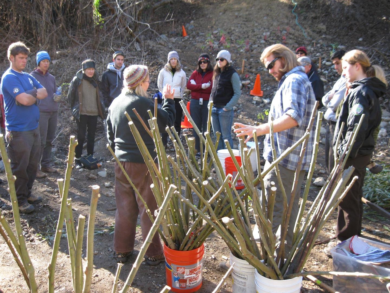 soil bioengneering workshop.jpg