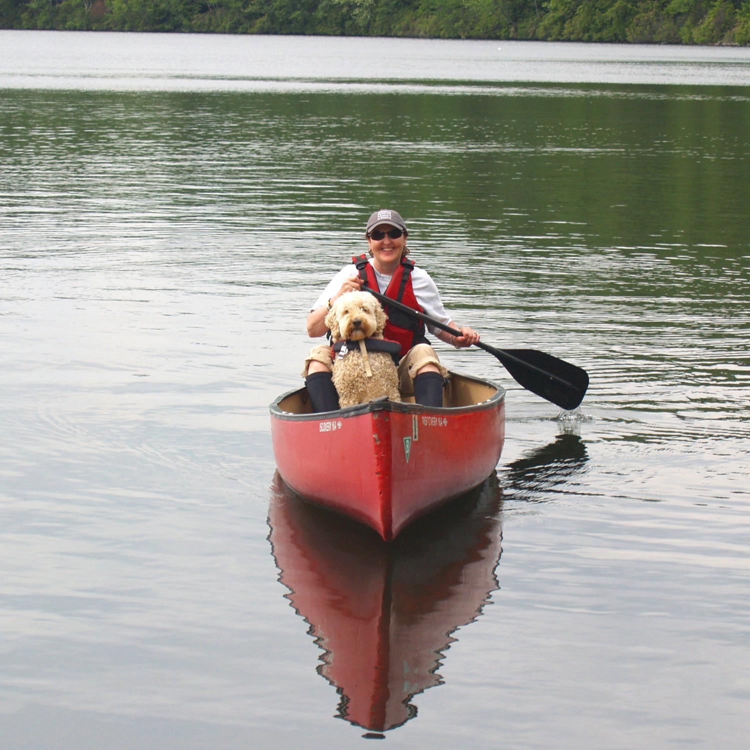 Canoeing - Dogs love the new experience of traveling by canoe. They get to smell all kinds of new things and you will have a richer experience just by observing their senses at work. Learn how to safely condition your dog to enter and exit the canoe and maintain balance. Life jackets will be provided for both humans and dogs.
