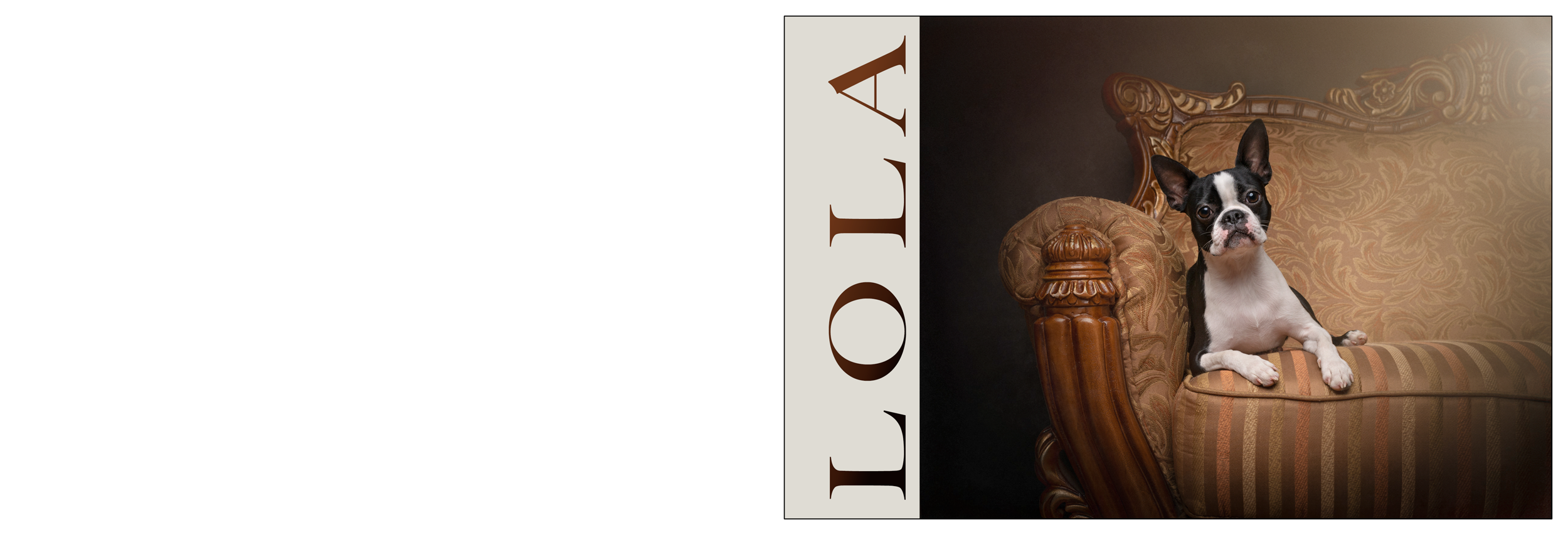 Lola-Cover-1.png
