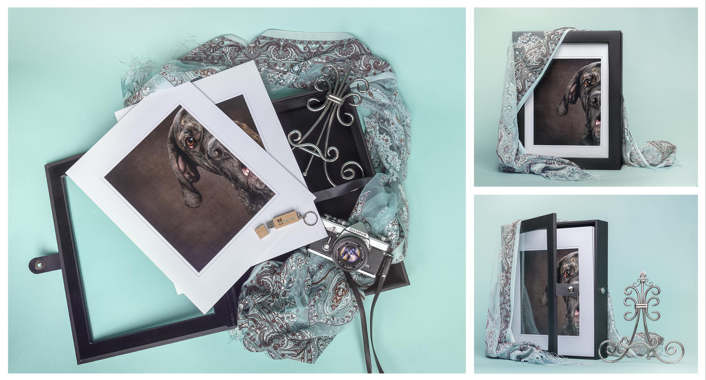 Portfolio Box Full Layout.jpg
