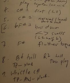 Some of the notes to help me remember my path through Radigue's OCCAM HEXA II