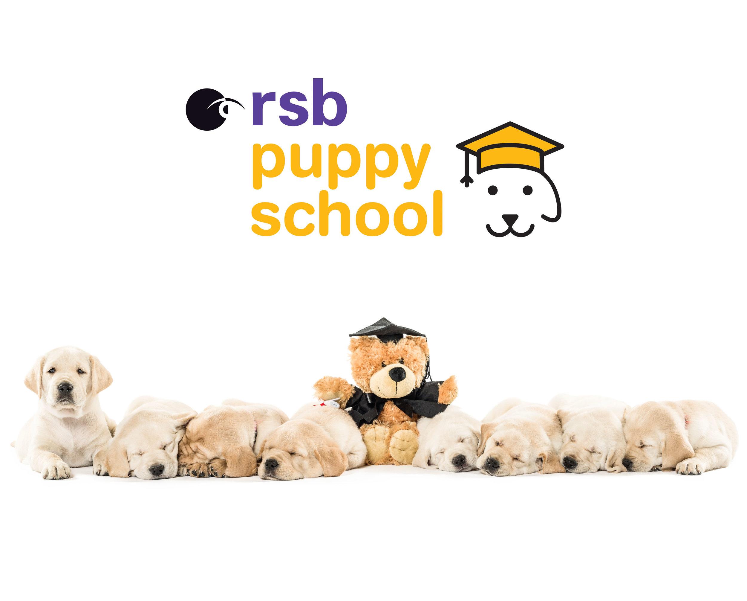 PuppySchoolBanner03.jpg