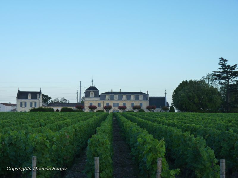 The landscape around Bordeaux is flat and dotted with small towns, fields, forests and some of the world's most famous wineries.