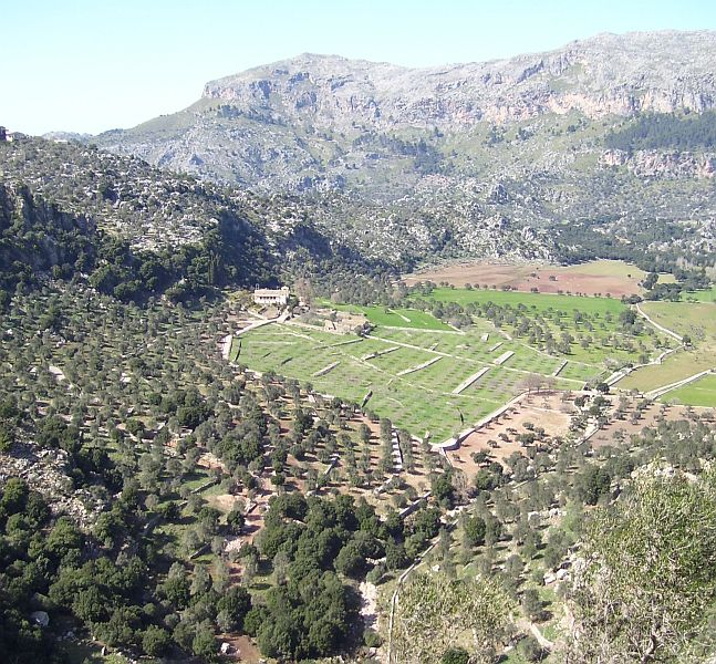 The 'cultural landscape' of Mallorca consists of fields and orchards in the valleys and on the lower slopes of the mountains. Winter and spring are the greenest seasons here, while summers are hot and dry and a bit more brown.