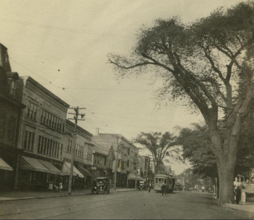 Broadway at Spring/Bull (City Hall Square) C. 1916. This is in front of City Hall, looking north up Broadway. Note the wonderful elm trees which use to be so common in Newport.