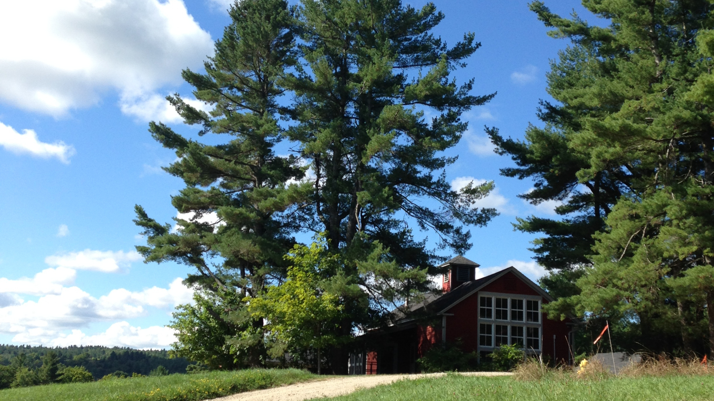 MacDowell Colony in the summer. (photo by Dan Millbauer)