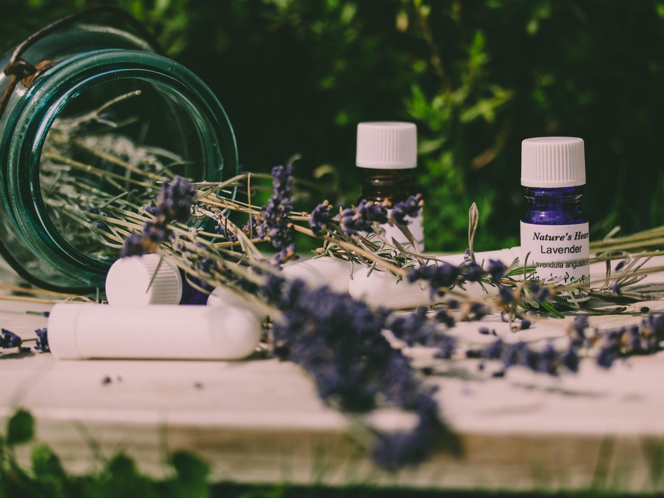 Lavender%2Bwild.jpg