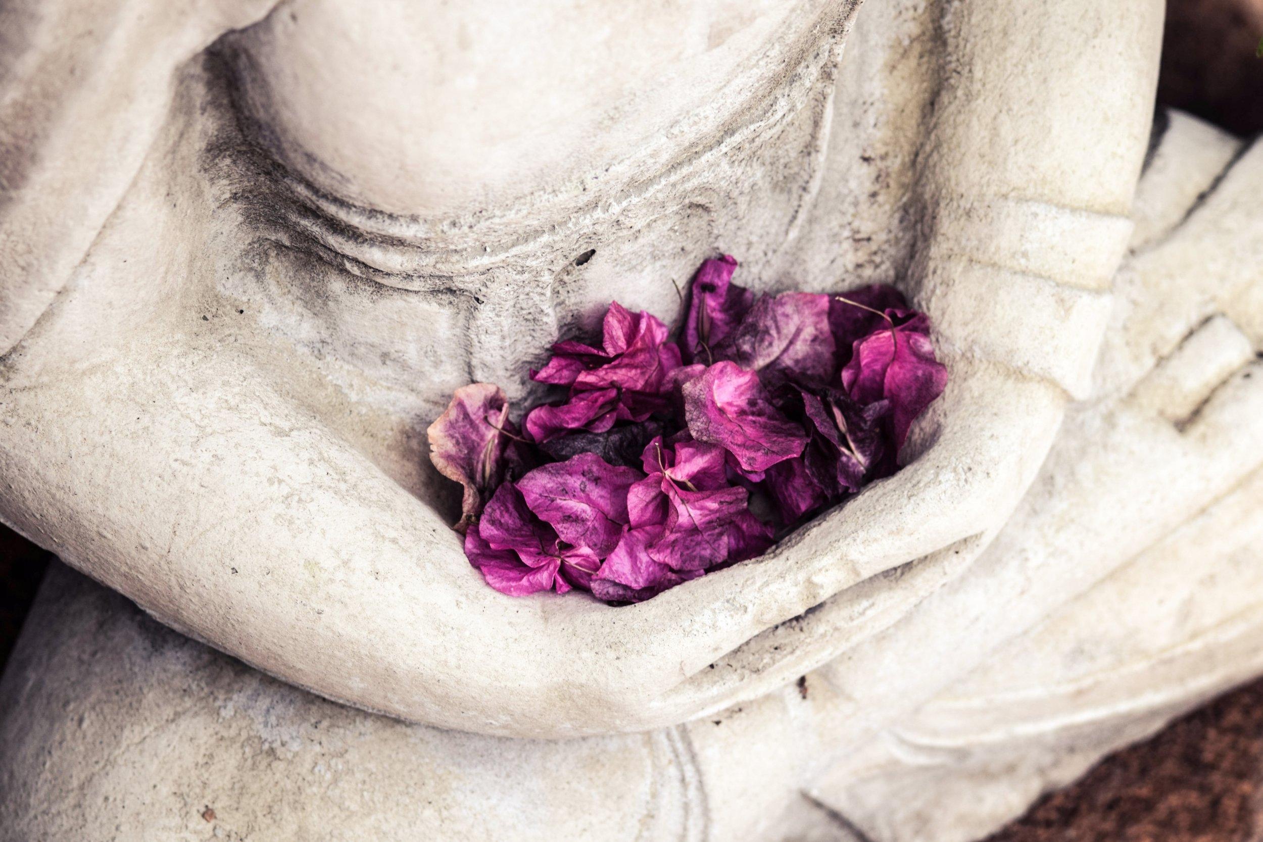 Buddha-Petals.jpg