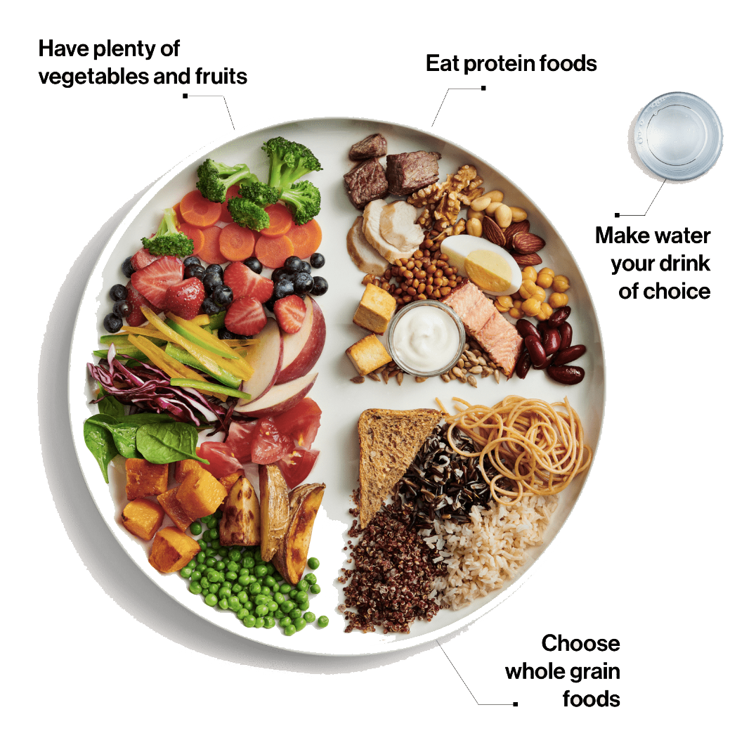 Canada Food Guide.png
