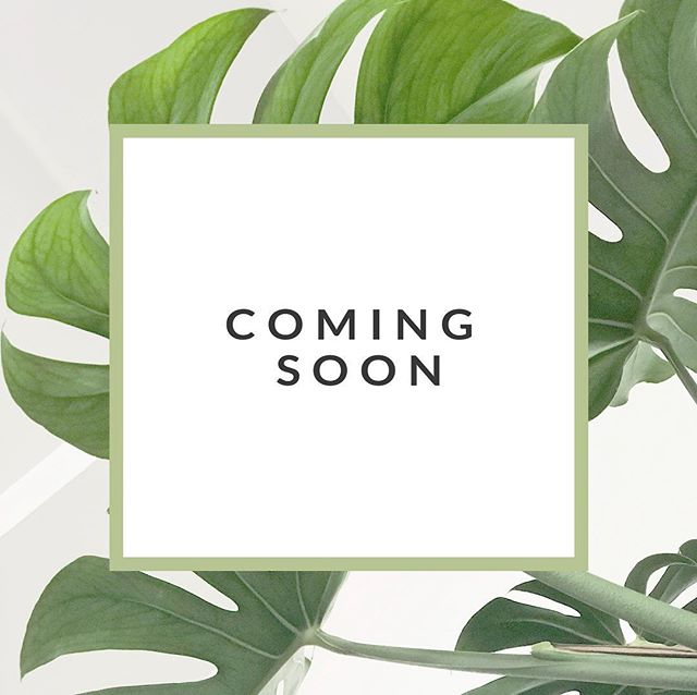 fast & easy healthy recipes, nutrition resources, & wellness articles all in one place. 🌿 the power of plantbased; coming soon.