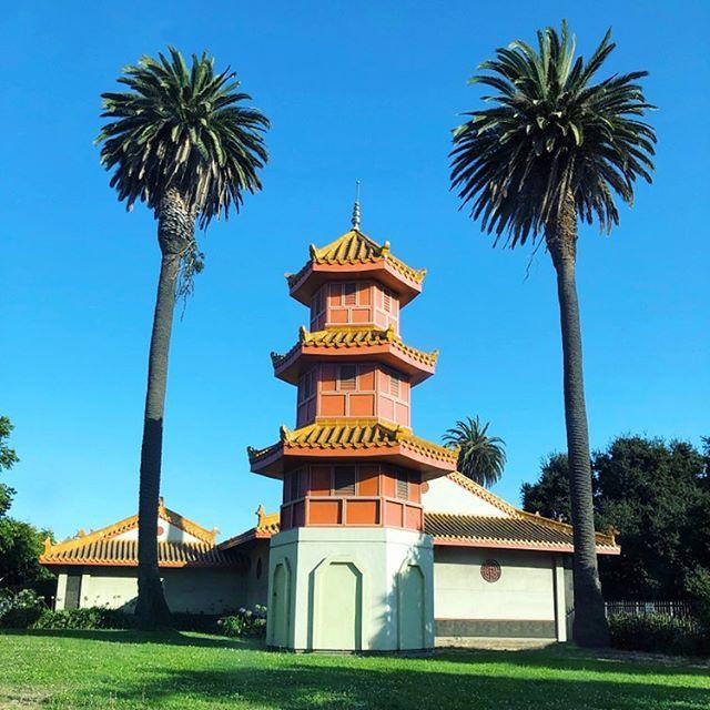 Glimpse of #Chinatown during a quick trip to #Oakland this week. 🌴🌴 #viewfrommyuber . . . . . . #california #cali #bayarea #westcoast #sfo #businesstrip #californiaholics #californialove #calove #visitcalifornia #wanderlust #flashesofdelight #thehappynow #beautifuldestinations #beautifulmatters #beautifulplaces #travelgram #livecolorfully #acolorstory #guardiantravelsnaps #city_explore #hello_worldpics #huffposttravel #iamatraveler #wheretofindme #theeverygirltravels #passionpassport