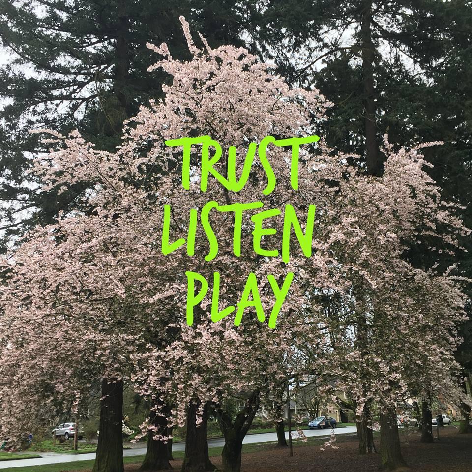 Trust Play.jpg