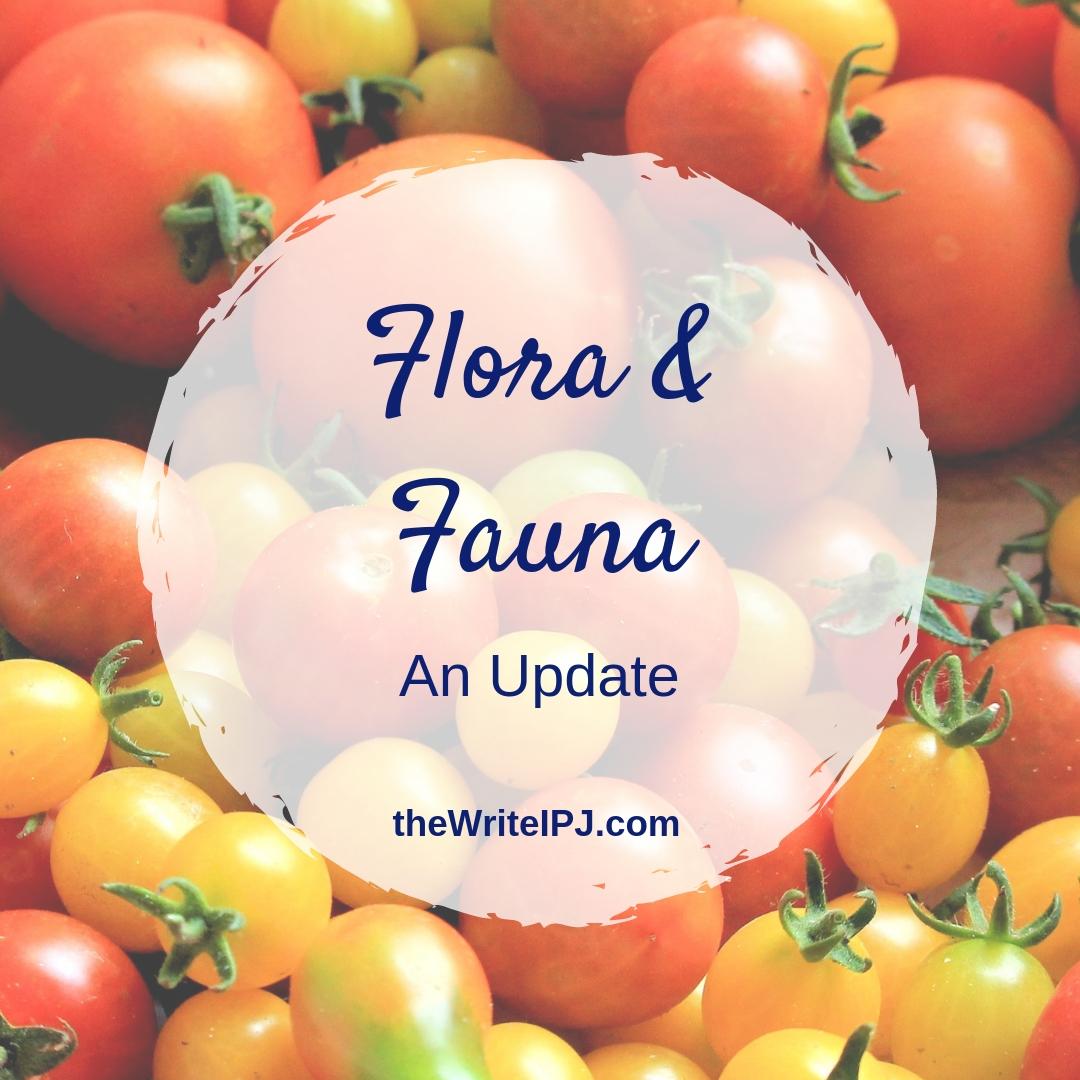 Flora & Fauna Update.jpg
