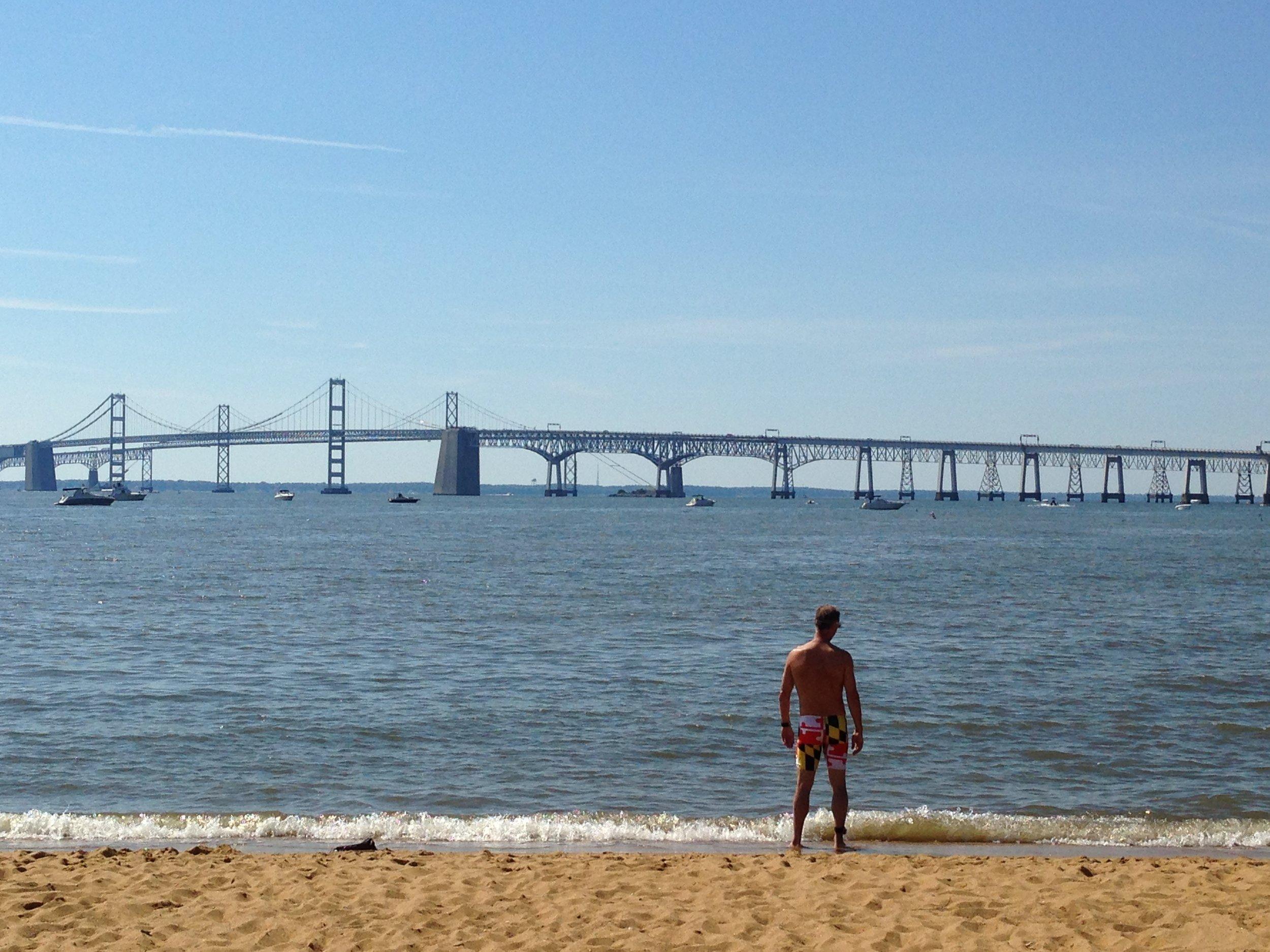 Chesapeake Bay Swim. 2010-2019