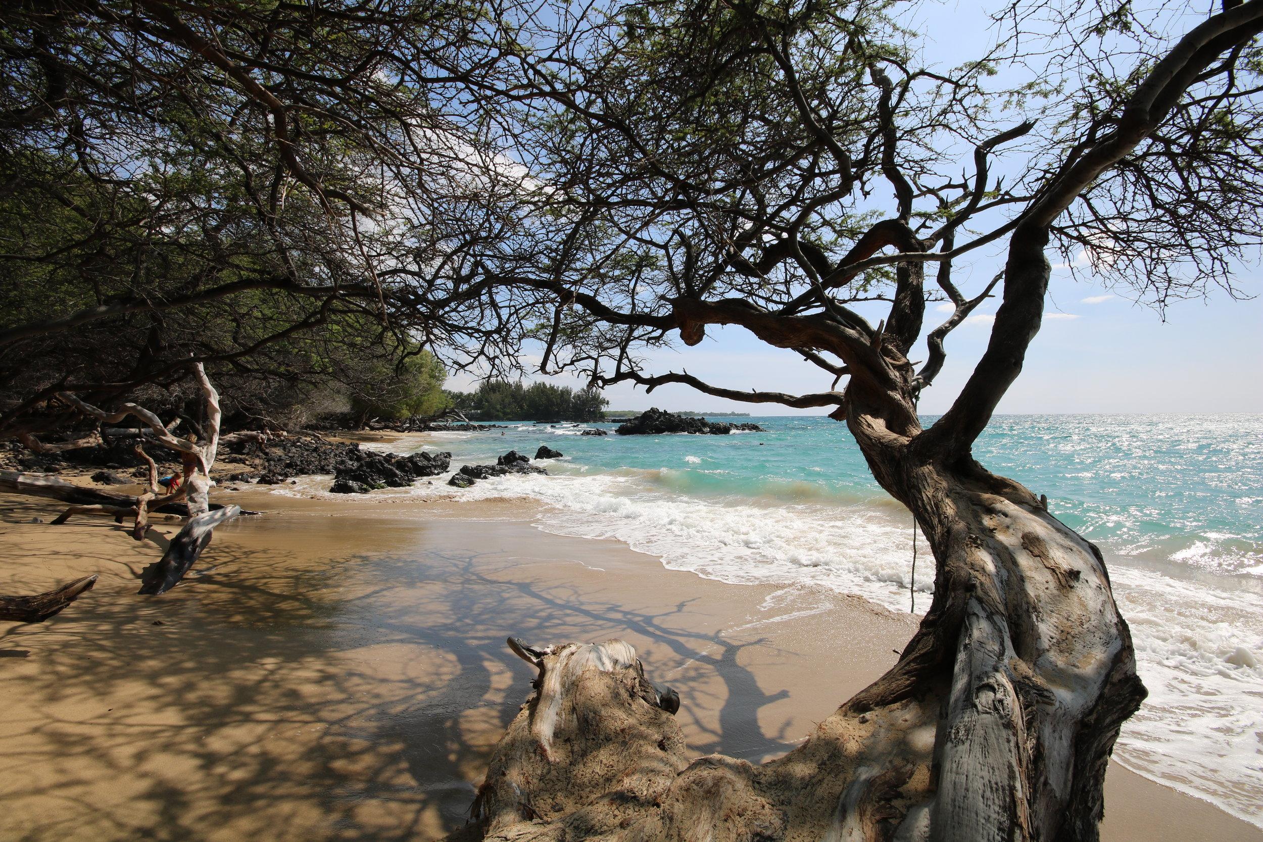 Hawaii - Kona is calling….