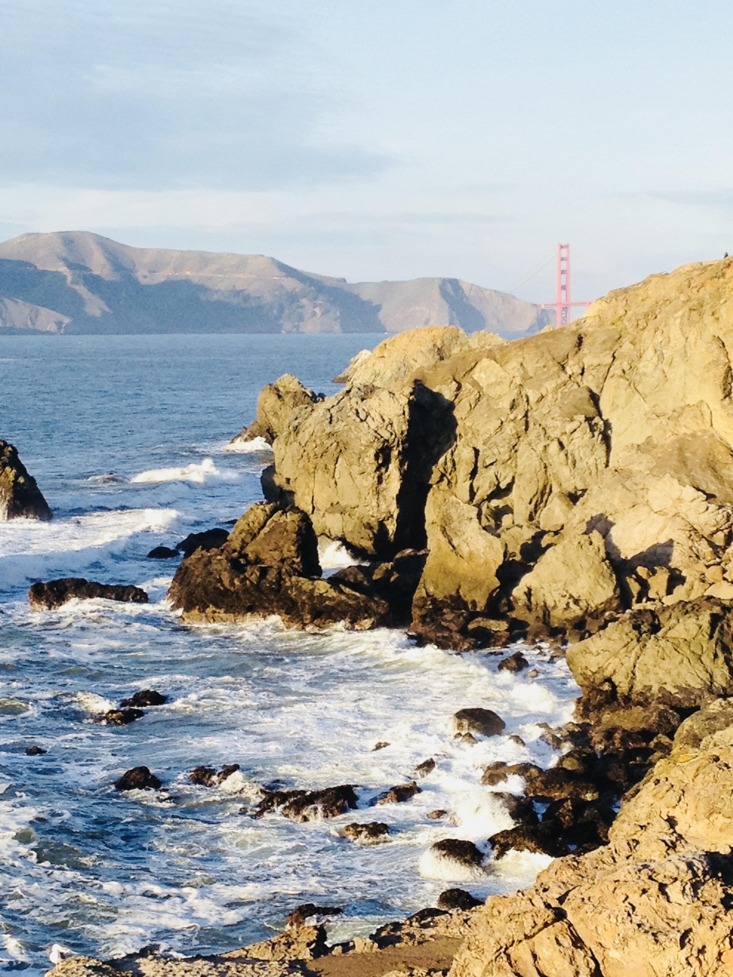 Bridge to Bridge 10k San Francisco Bay. 2012