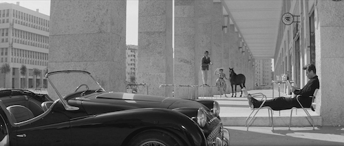 An example of the film's stunning cinematography.