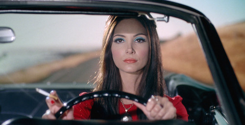 The Love Witch .