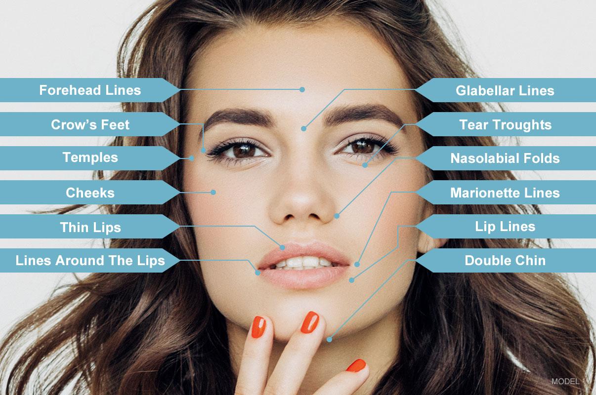 treatment-areas.jpg