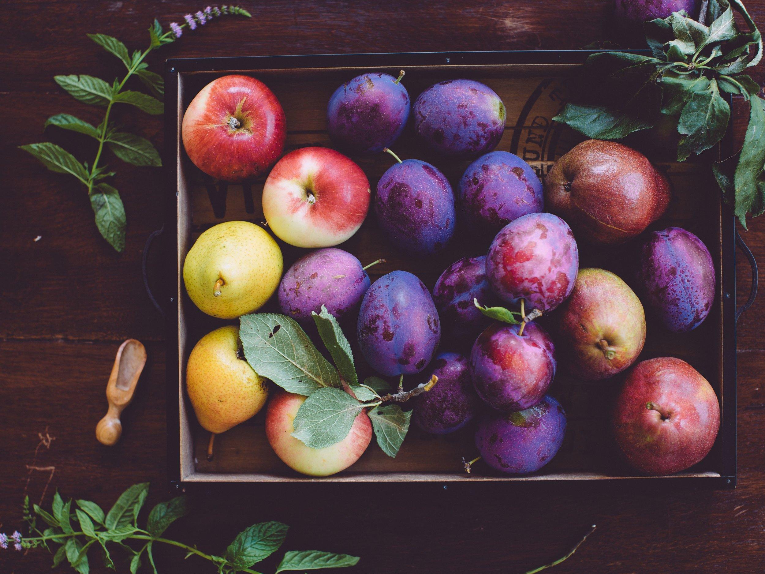 apples-plums-56a30c7a3df78cf7727b9a85.jpg