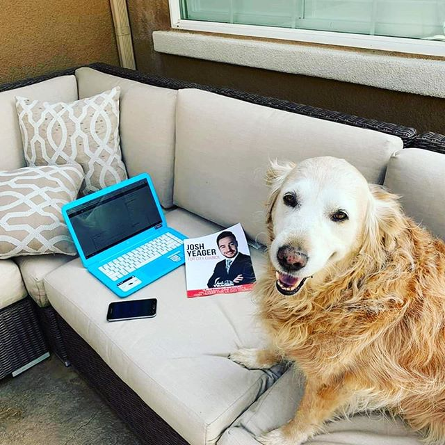 Sammy, our official campaign dog, was busy this weekend calling and texting voters to make sure we get out the vote!  If you want to join Sammy and #TeamYeager, sign up online to volunteer at: https://docs.google.com/forms/d/e/1FAIpQLSeYYbCTp55sxTb2t1tcrHvYXkFN5lzlljl21ze-RrEobjDd9g/viewform (link in bio)  #TrueStory
