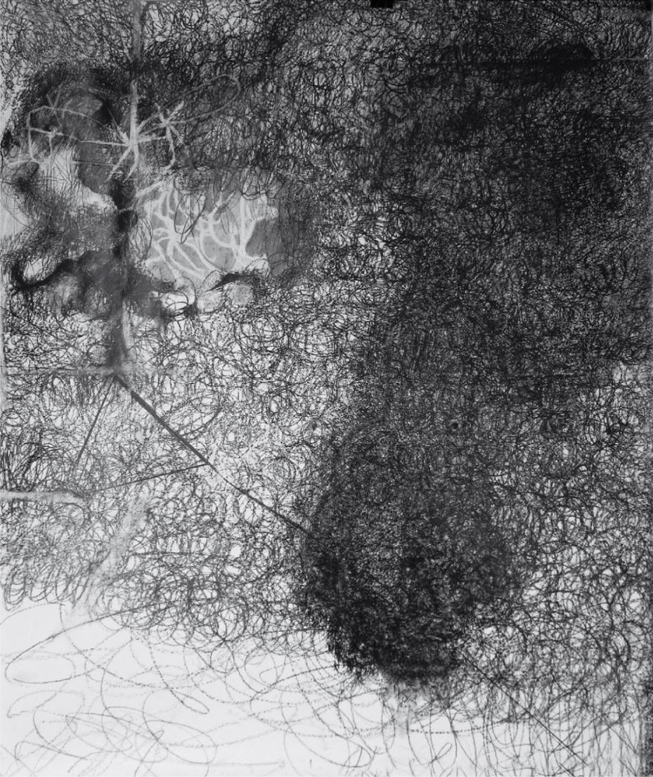 O.T., 2010  Bleistift auf Papier, 180x150cm