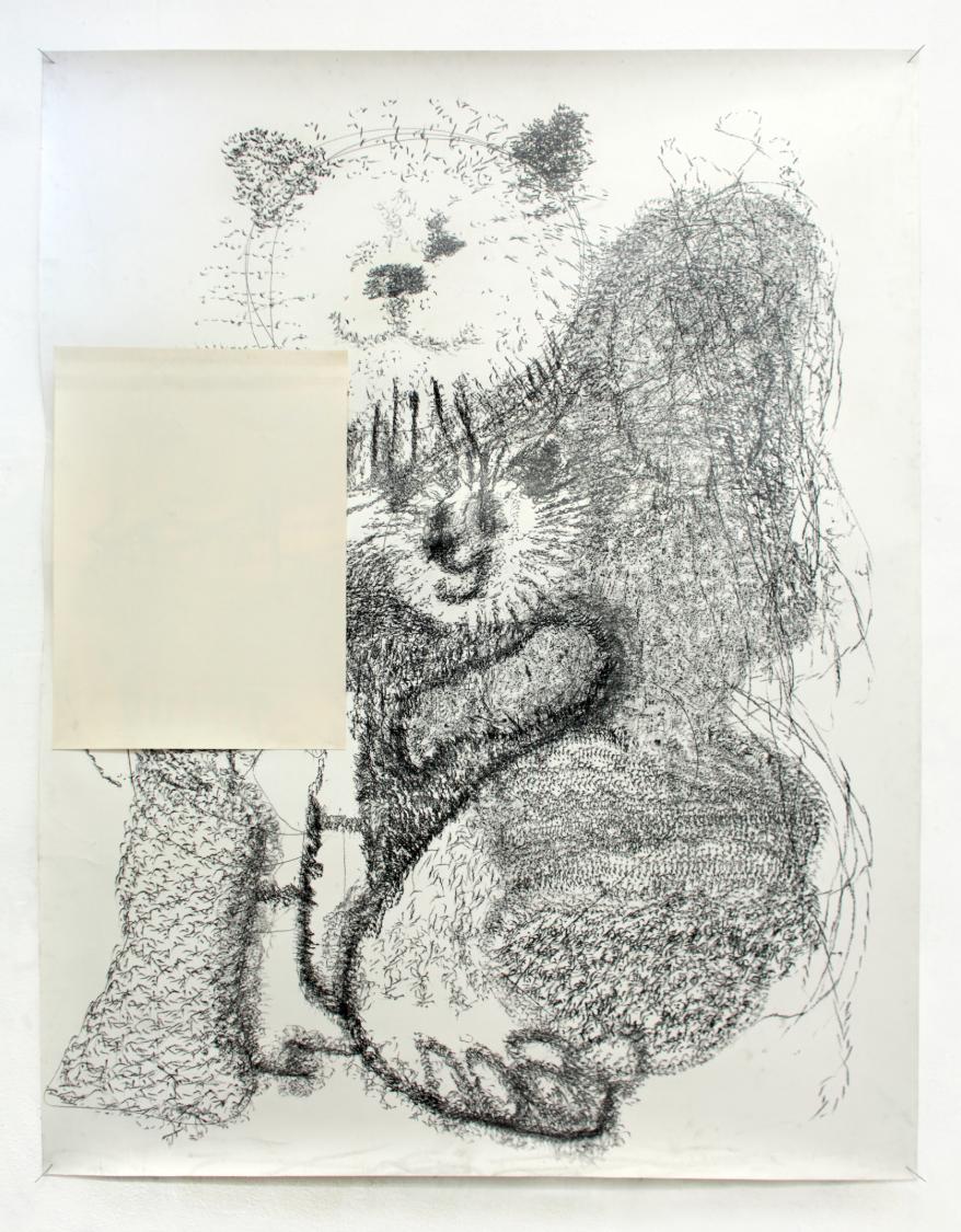 O.Z. ( Bärin ), 2013  Bleistift auf Papier, 180x150cm