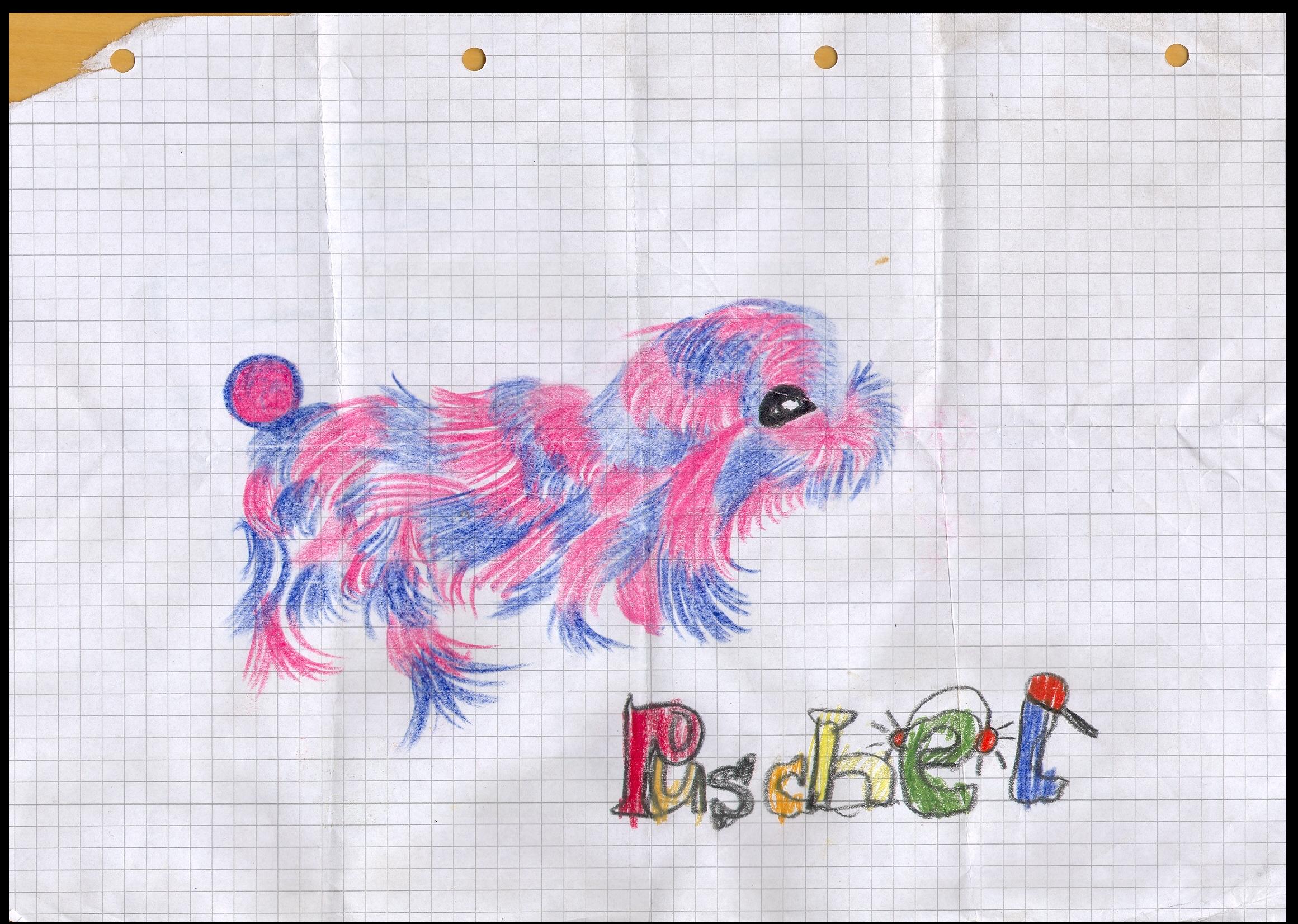 O.T. ( Puschel ), 2015  Buntstift Papier, 29.8x21cm