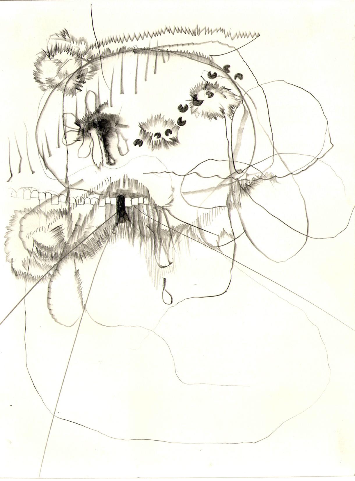 O.T. ( schnr mk ), 2007  Bleistift auf Papier, 26.5x35cm