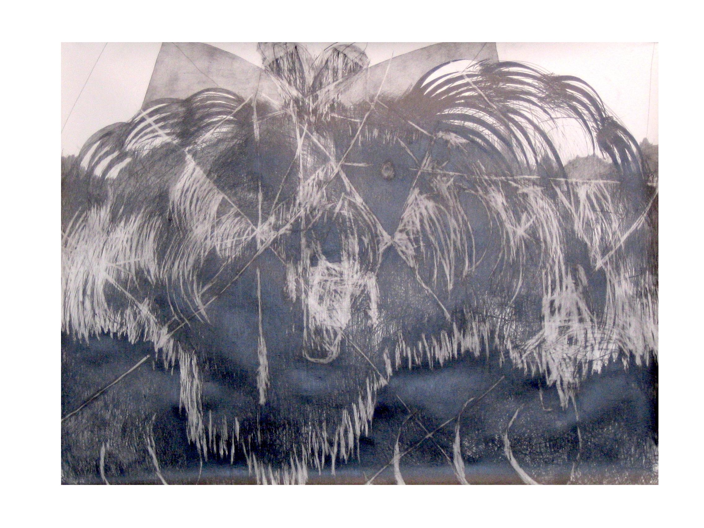 O.T. ( Bärin ), 2004  Bleistift Papier, 150x200cm