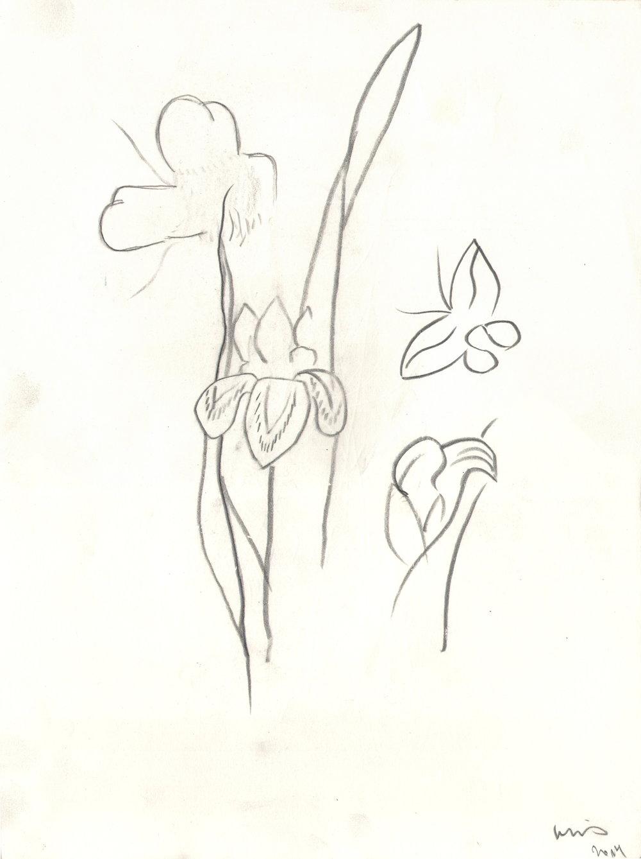 O.T. ( Serie Shunga 1 ), 2014  26x35.5cm, Bleistift auf Papier