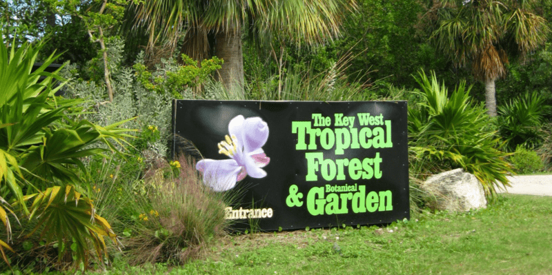 tropical-forest-garden-key-west.png