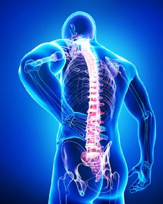 8d045740a9399218c11a9e8a3872d970--spinal-stenosis-spinal-cord-injury.jpg