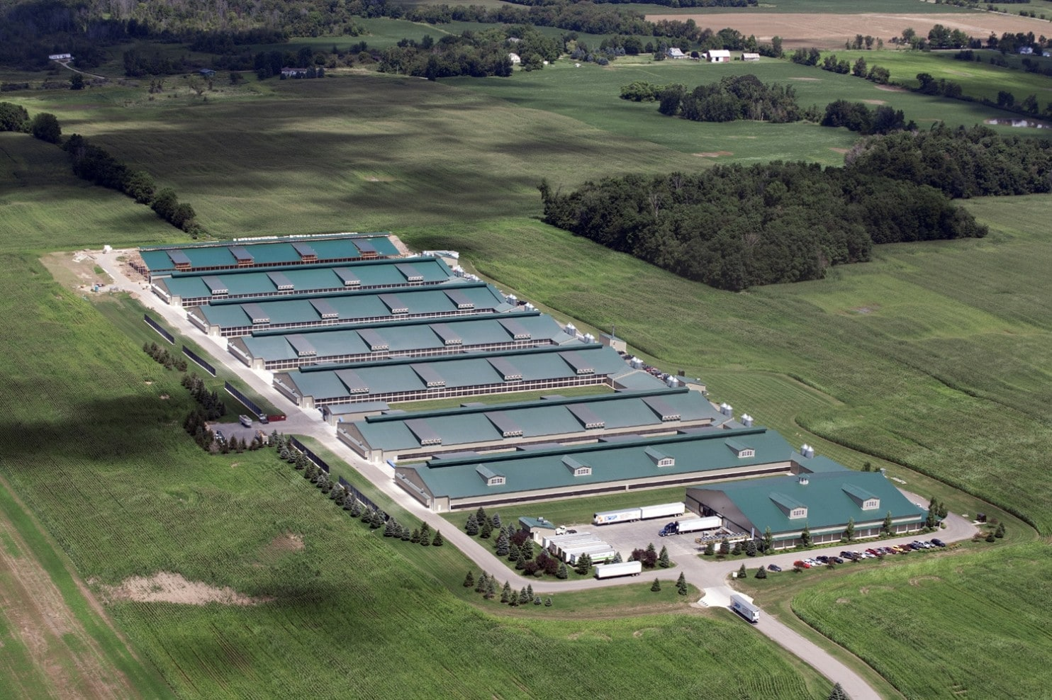 """A massive """"USDA Organic"""" egg producer grows over 1.6 million hens inside these barns with 3 chickens per square foot."""