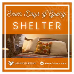 Seven Days of Giving_Shelter.png