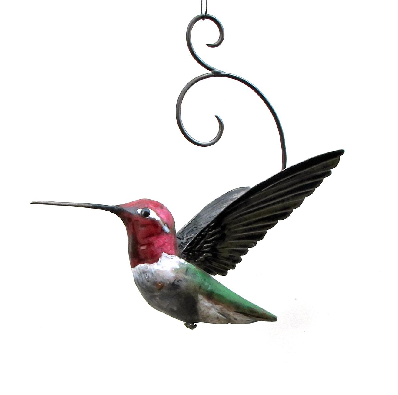 Anna's color hummingbird1-01.jpg