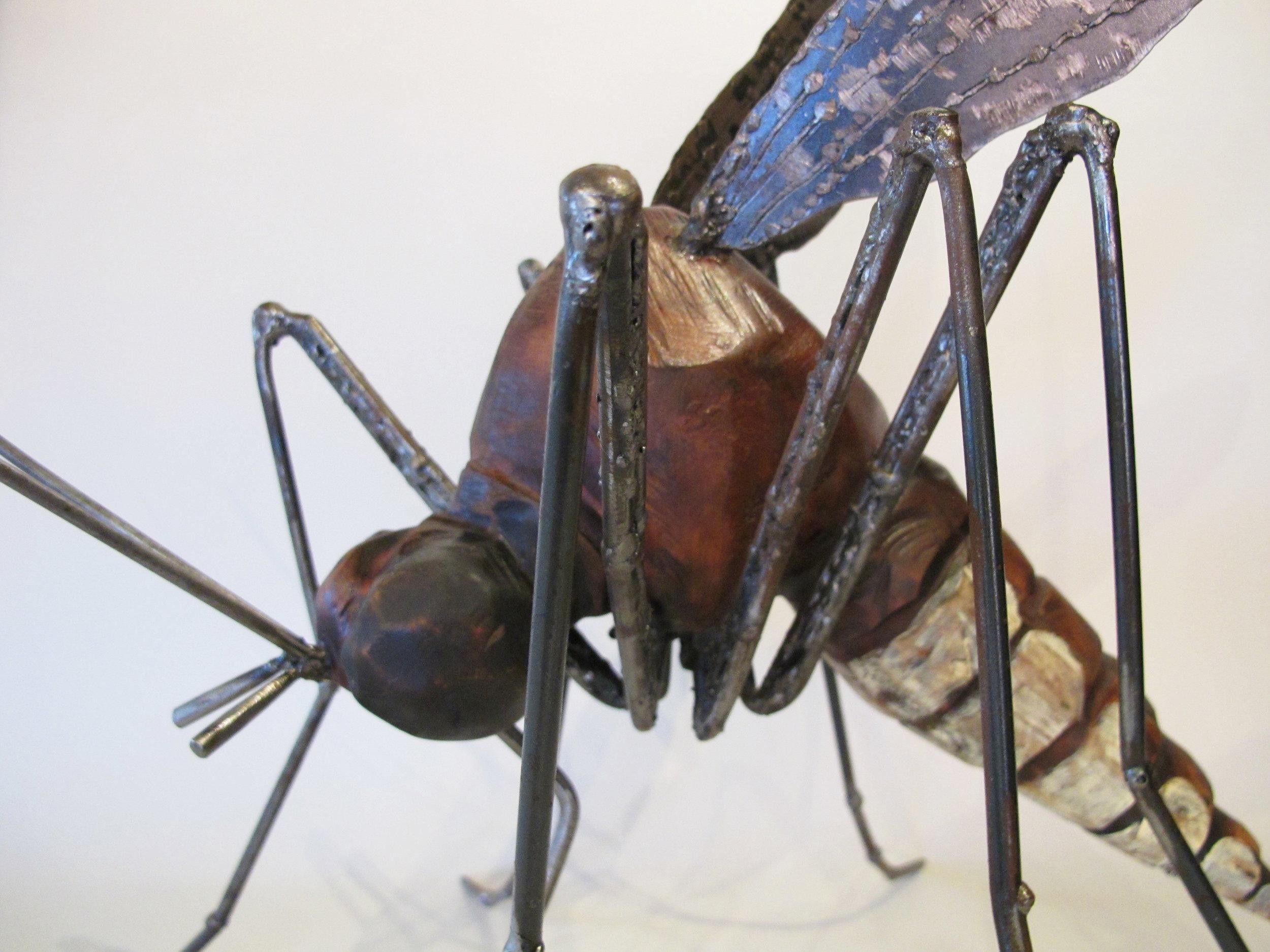 Mosquito3-08.jpg