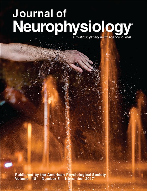 Avraham G, Mawase F, Shmuelof L, Donchin O, Mussa-Ivaldi S, Nisky I (2017) - Representing delayed force feedback as a combination of current and delayed statesJournal of Neurophysiology 118:2110-2131* Featured on issue cover