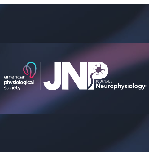 UeHara s, Mawase F, therrien as, cherry-allen km, celnik pa (2019) - Interactions between motor exploration and reinforcement learningJournal of Neurophysiology doi: 10.1152/jn.00390.2018
