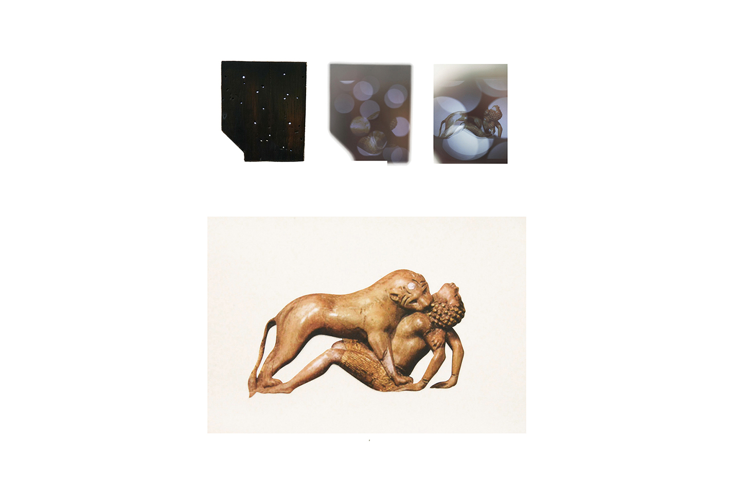 Specious-Species  - Installation.  2018  Woodworm lens Lightbox, acetate print of Phoenician carving of 'A lioness devouring boy'