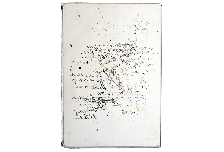 Language Without Words    2016  Ink, blotting paper   27 x 18 cm