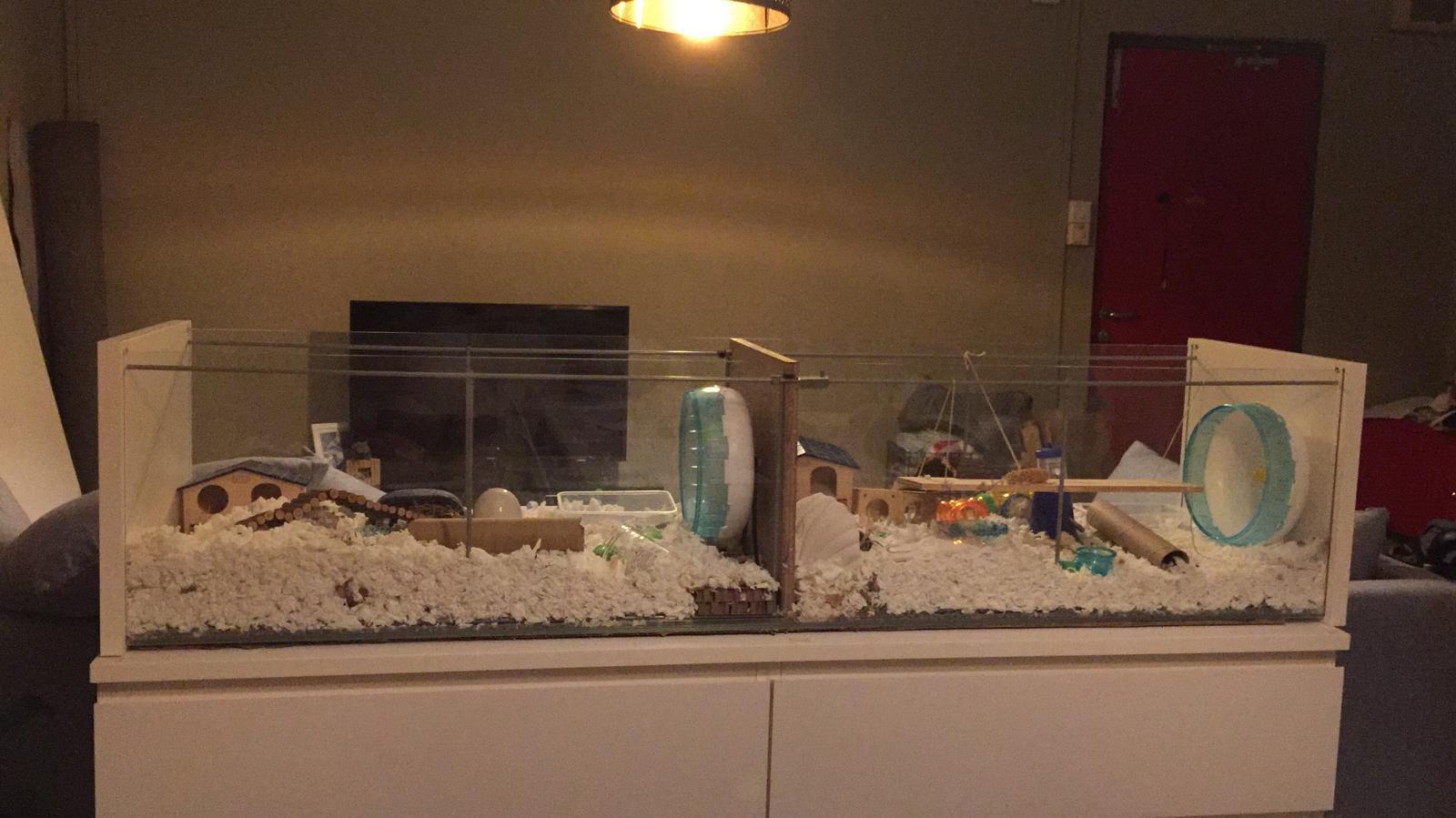 Hamster Cages Part I